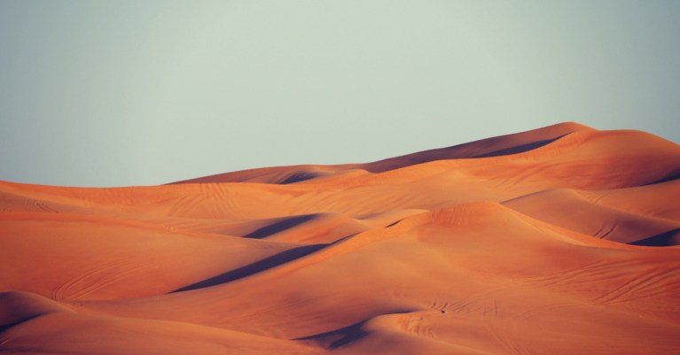 Our Battles Belong to the Lord: 5 Truths We Can Learn from the Israelites