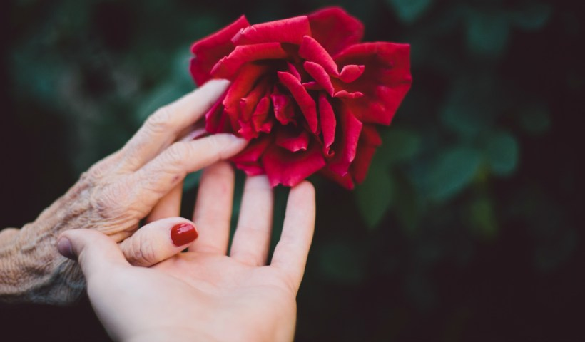 How to Honor Your Parents as an Adult (and why you should) | alyssajhoward.com