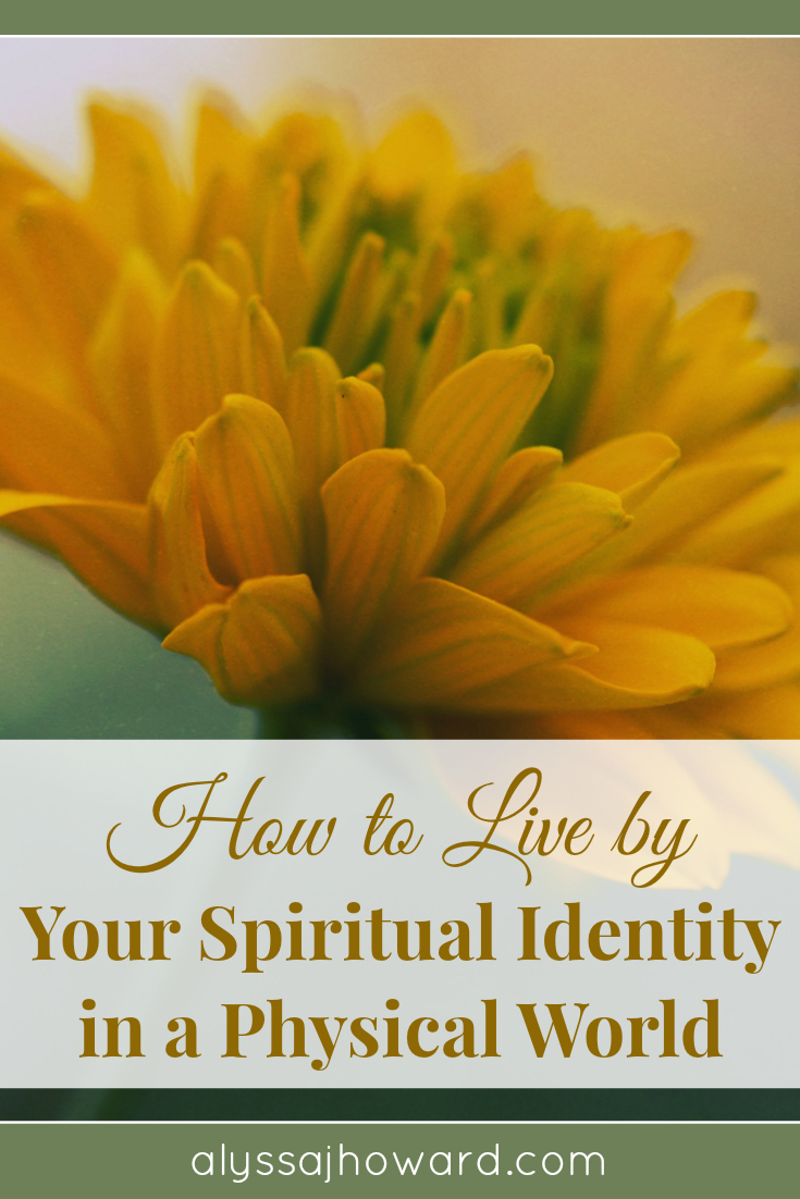 If you're wondering how to live by your spiritual identity in a physical world, the answer lies in knowing who you are and what you are called to do.