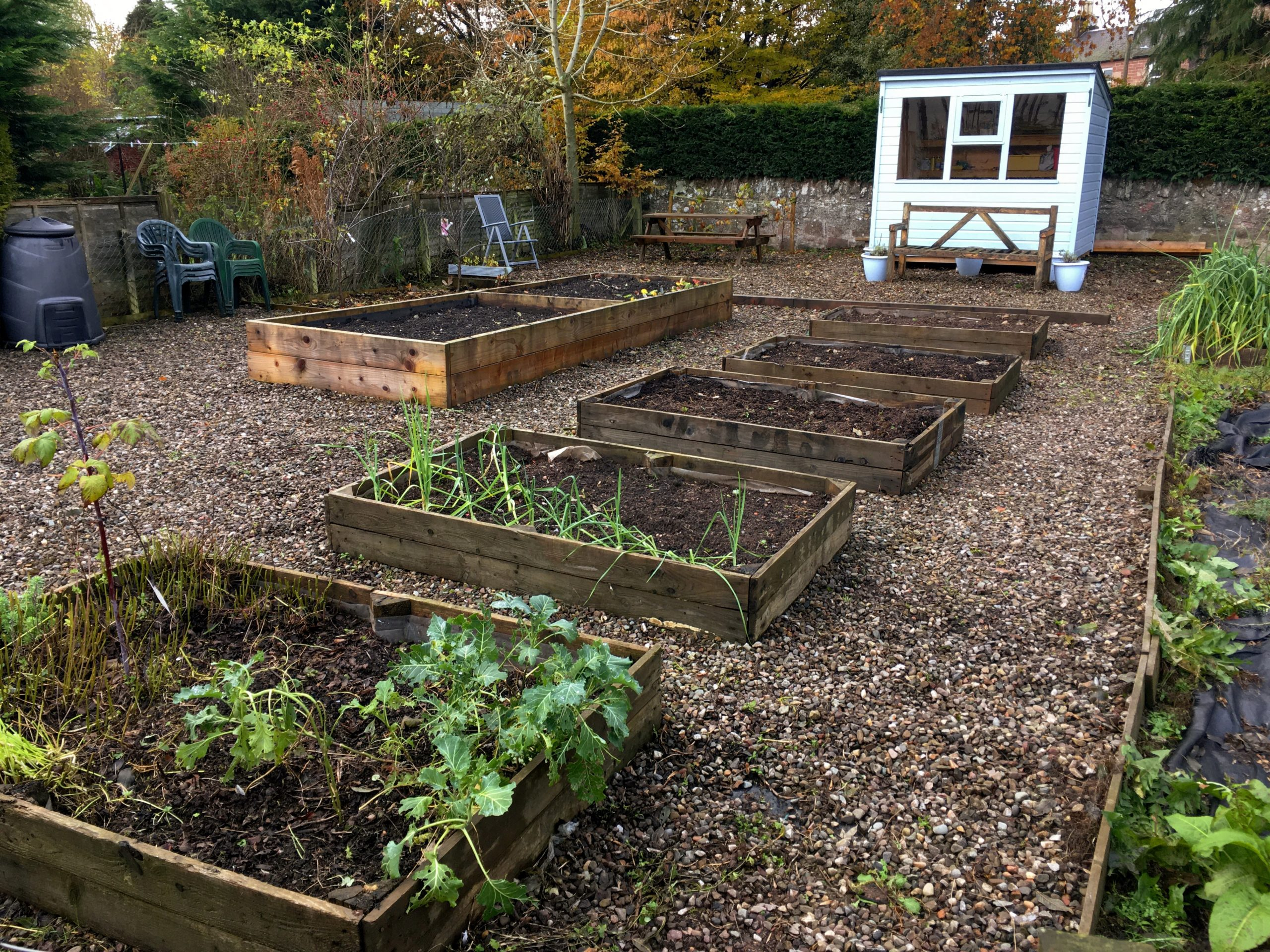 Allotment shared with AYP