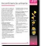 Incontinencia Urinaria (Bájalo)