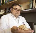 Manuel Sarasa: avances contra el Alzheimer