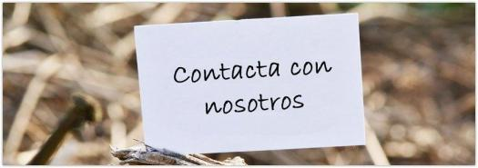 contacta-con-nosotros-02