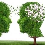 Estudian cómo bloquear a una enzima clave en el Alzheimer Un inhibidor potencialmente prometedor para el tratamiento del Alzheimer.