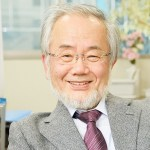 Nobel de Medicina al Descubrir cómo Reciclan las Células la Basura