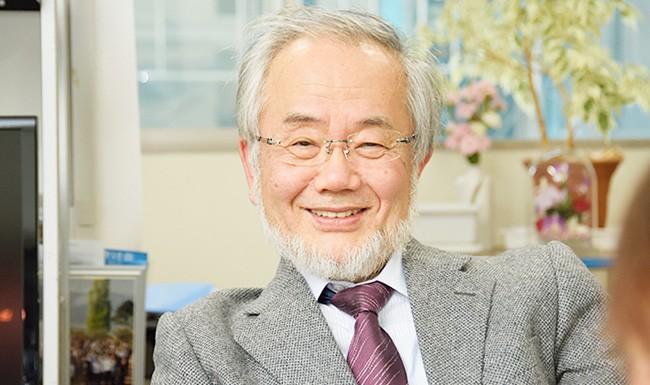 Nobel en Medicina 2016 (autofagia)