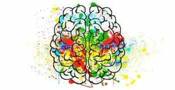 Existe Relación entre Polución y el Alzheimer?