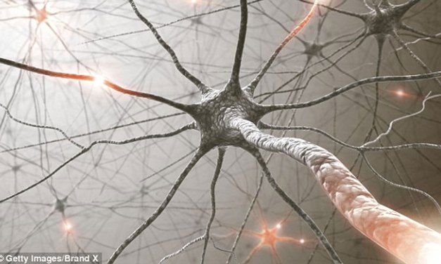 New Alzheimer's Treatment Shows Promise in Mice