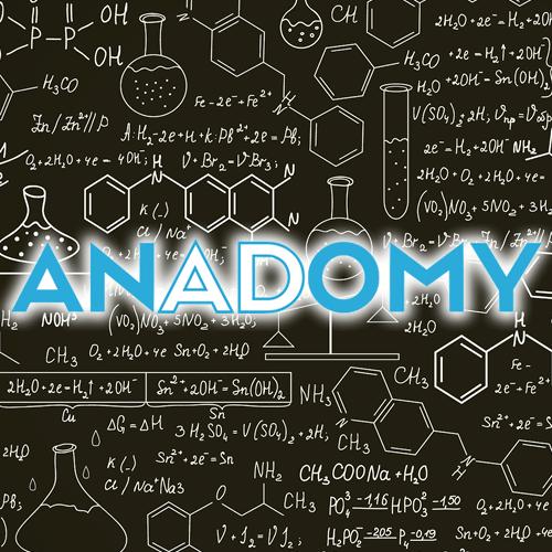 Anadomy
