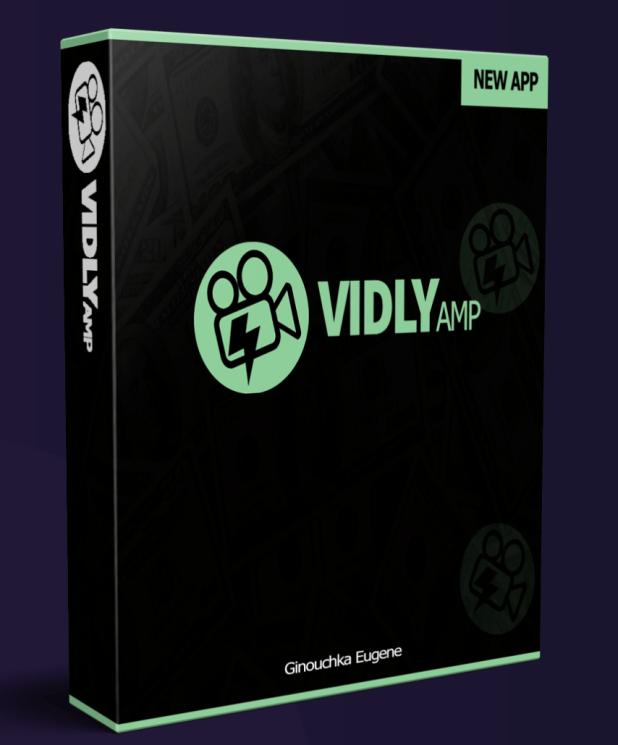 VidlyAmp Review