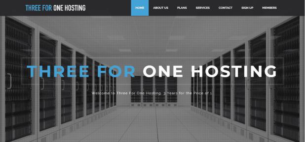 ThreeForOne Hosting Review