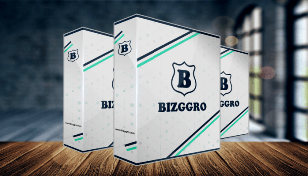 Bizggro Review