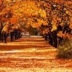 Relato de otoño