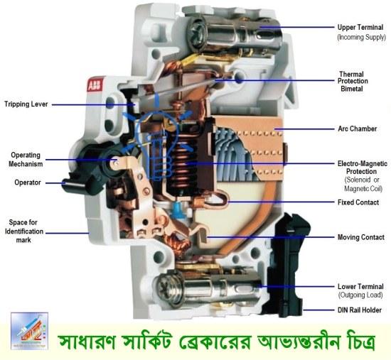 সাধারণ সার্কিট (MCB) ব্রেকারের অভ্যন্তরীণ গঠন