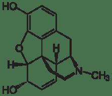 endorfine morfina oppiacei oppioidi endogeni