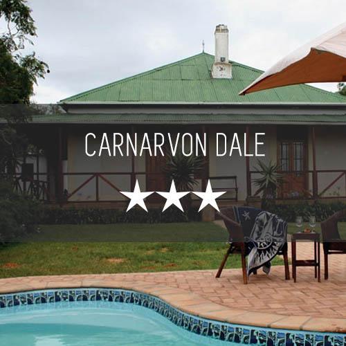 Carnarvon Dale   Featured Image