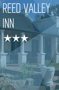 Amakhala   Home   Lodge Carousel   Reed Valley Inn