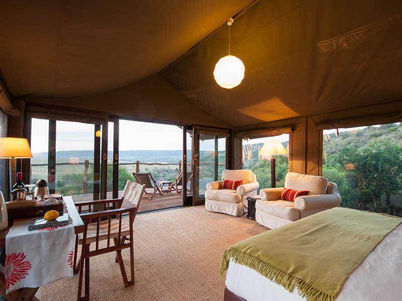 Hillsnek Safari   Accommodation   View from Tent