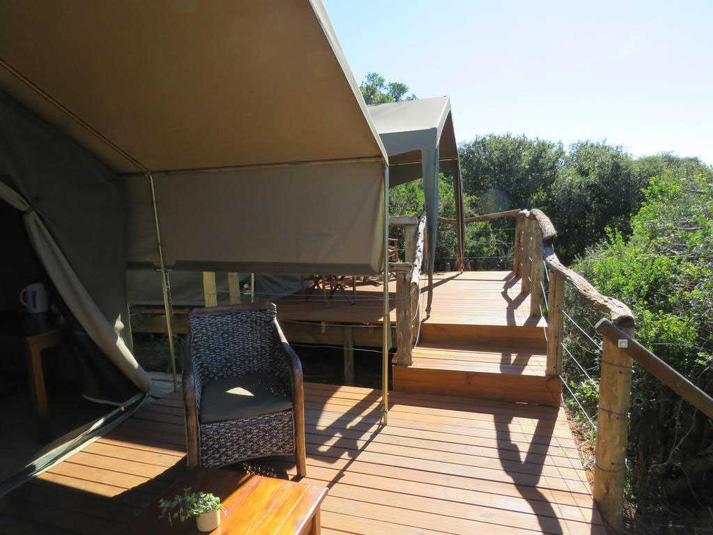 Woodbury Tented Camp  Accommodation   View from Tents
