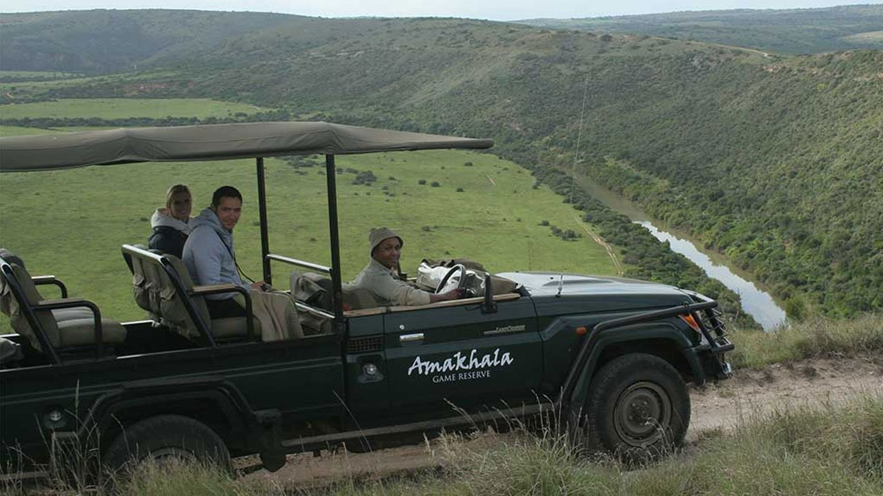 Amakhala Game Reserve Activities Game Drives Day Safari