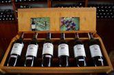 wine-tasting-naples_10