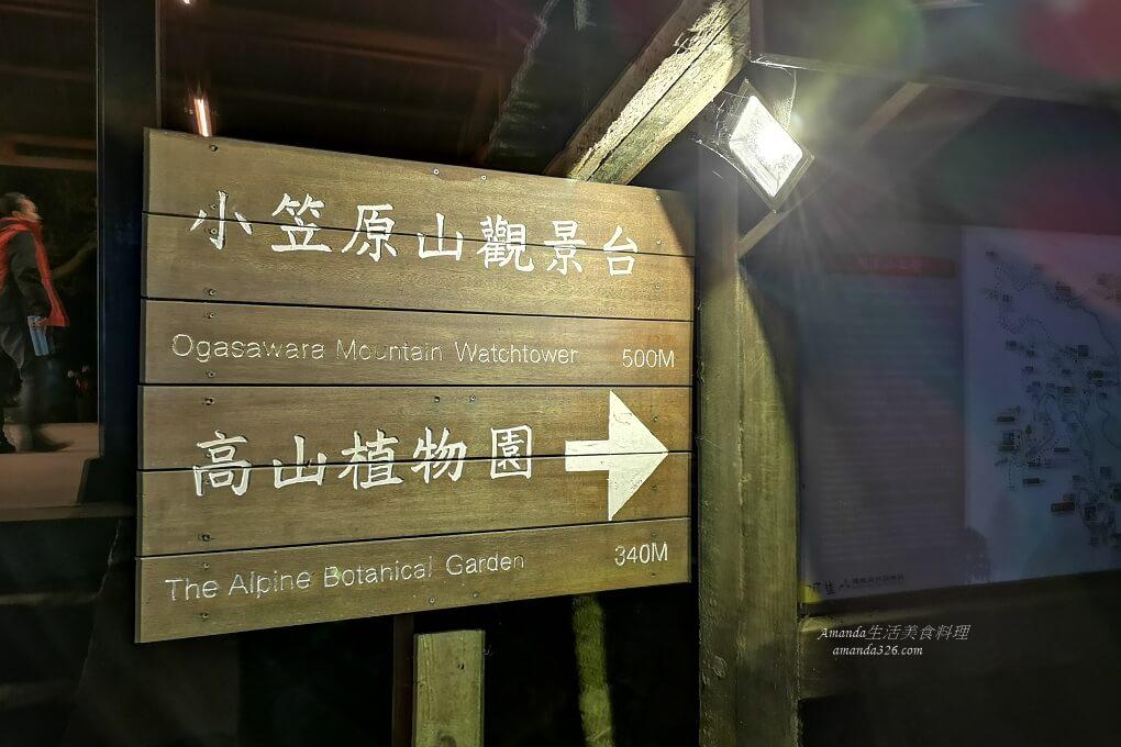 台灣好行,奮起湖,森林遊樂區,祝山小火車,祝山日出,阿里山,阿里山國家森林遊樂區,阿里山小火車,阿里山接駁車,阿里山日出,阿里山神木,阿里山賓館,阿里山餐飲