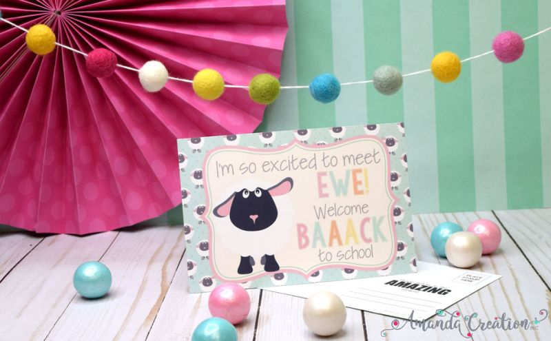 Funny Sheep Back to School Postcards