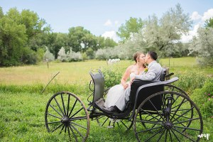 Telluride Wedding Photos