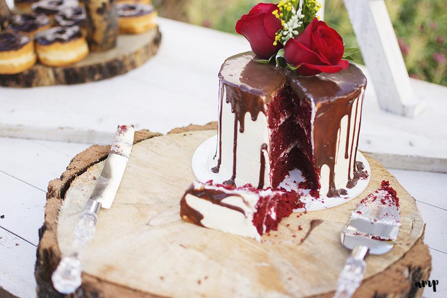 cake cutting | Palisade wedding photographer