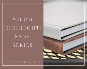 Album Highlight: Sage Series | amanda.matilda.photography