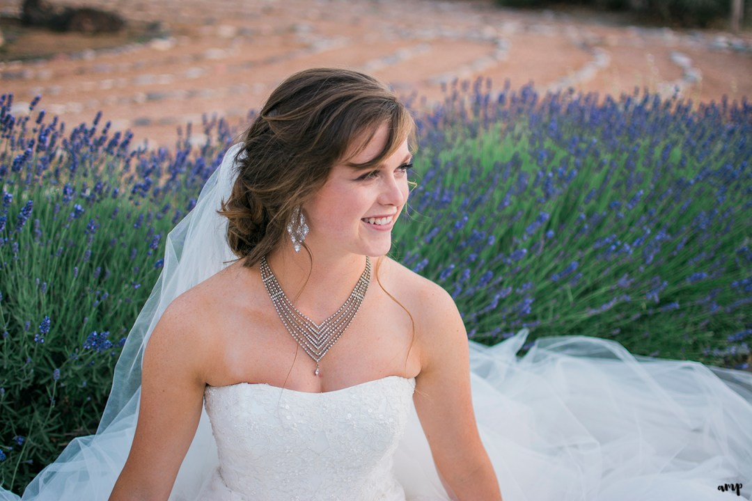 Bride sitting in field of lavender