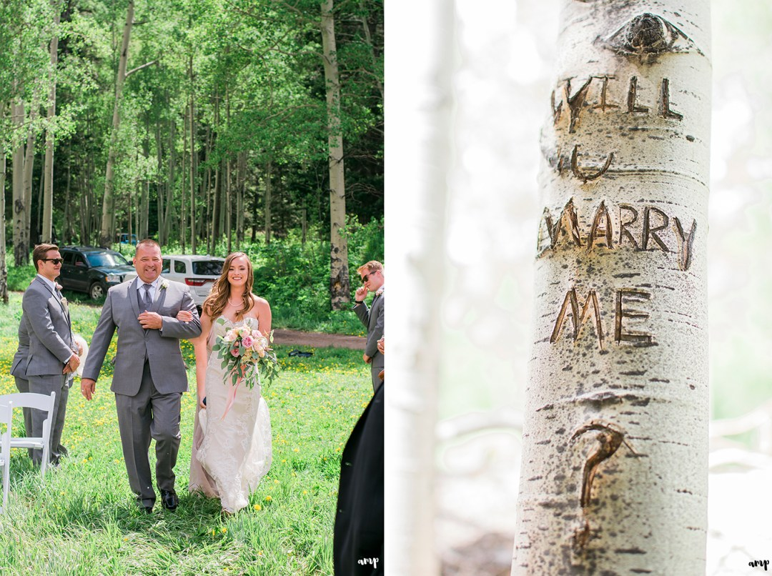 Will You Marry Me carved into an aspen tree