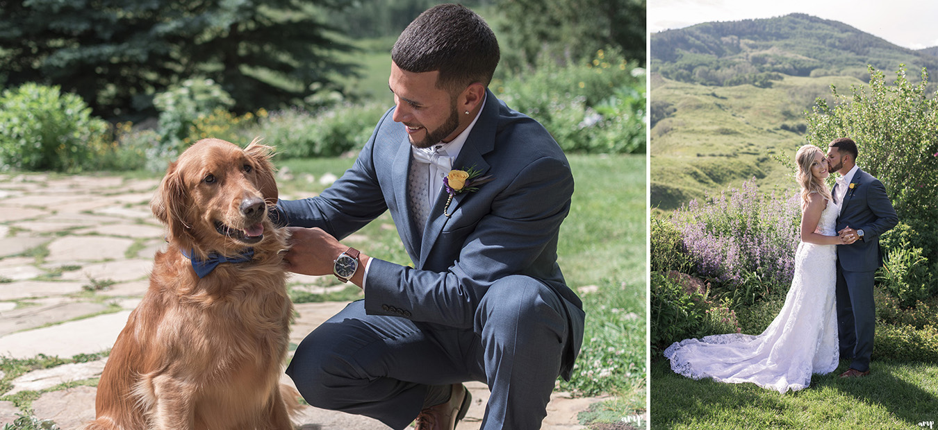 Groom puts bow tie on their dog
