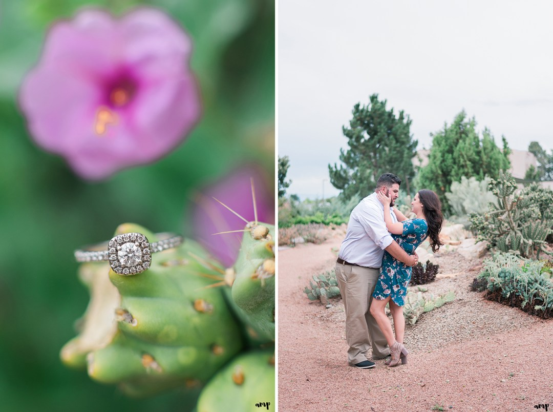 Engagement ring photo on a cactus in the Montrose Botanic Garden