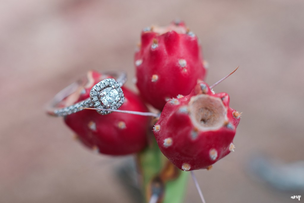 Engagement ring photo on a prickly pear cactus