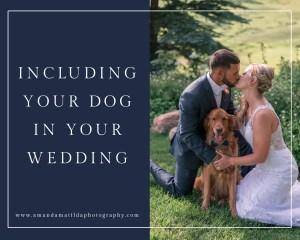 Including Your Dog in Your Wedding | amanda.matilda.photography