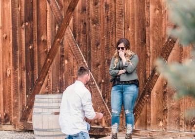 Morgan & Josh's Amy's Courtyard engagement proposal | amanda.matilda.photography