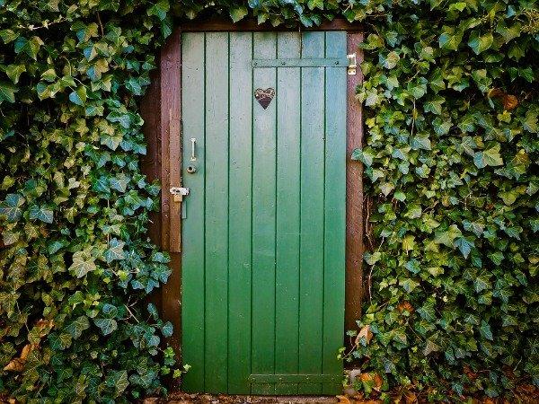 amandaricks.com/doorie-was-green-with-invy/