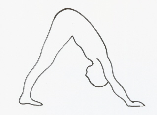 Climbing back on the yoga mat. Poses of the day