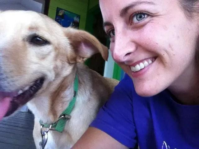 Roatan rescue dog