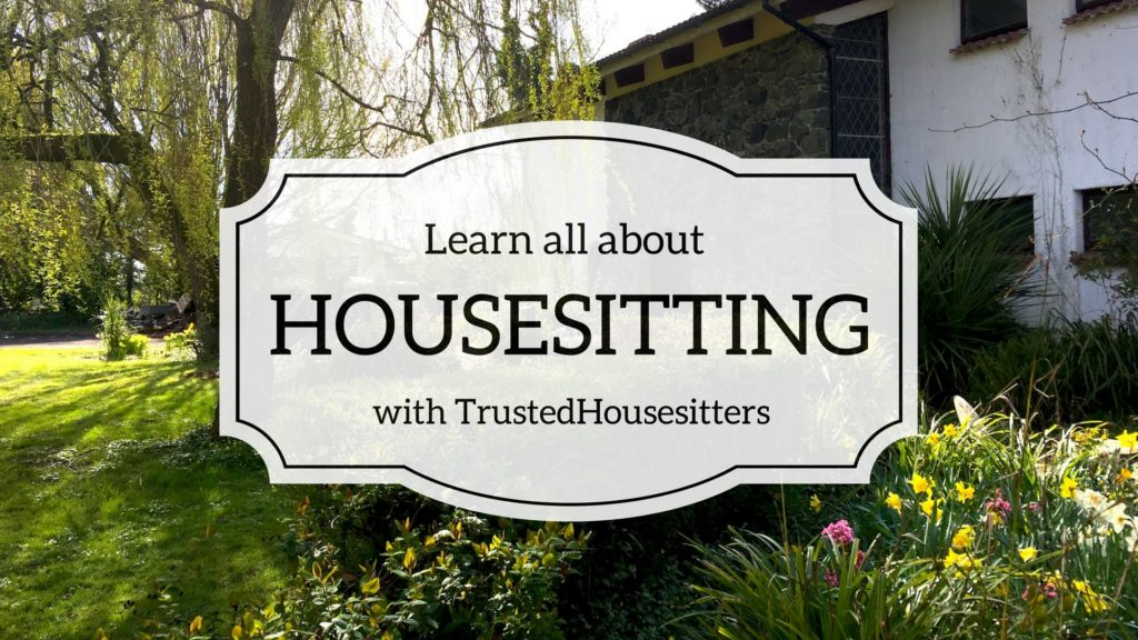 housesitting insights for travelers and homeowners
