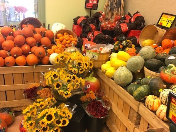 Fall in New England: Pumpkins and gourds