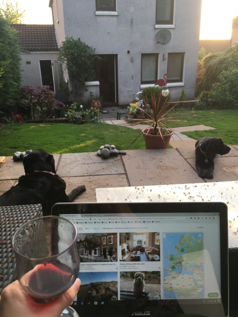 An out-of-view housesitter holds a glass of wine and an open laptop while overlooking a black dog and backyard of a large grey house in Edinburgh