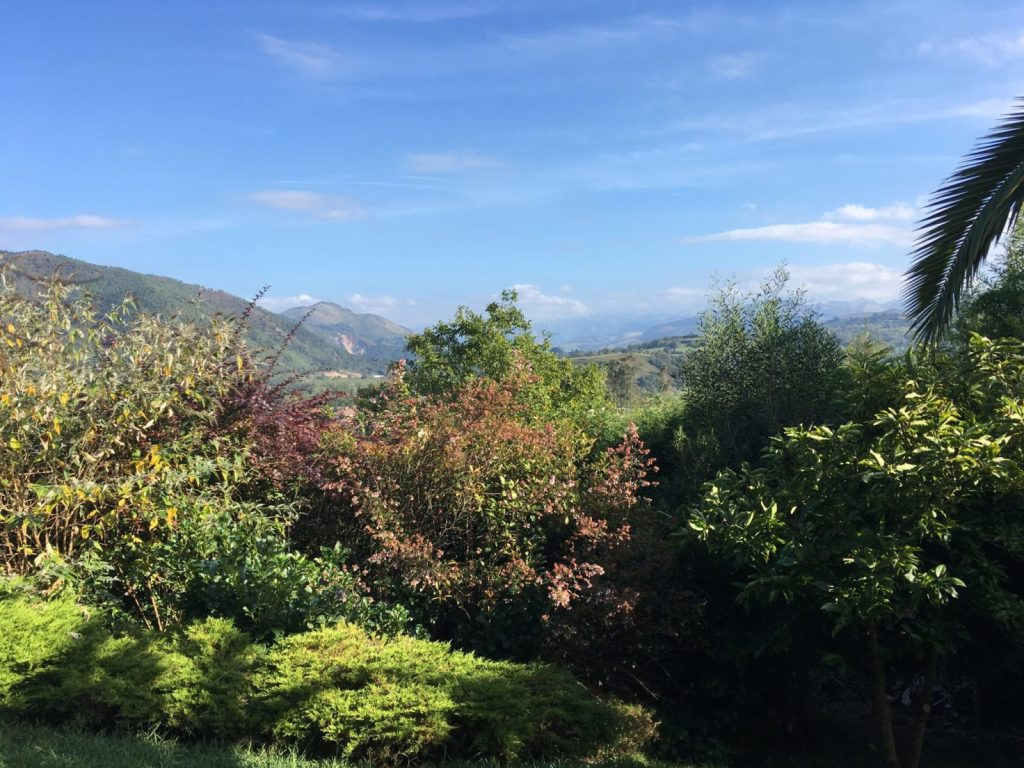 View of the Picos de Europa from our front door in Asturias Spain