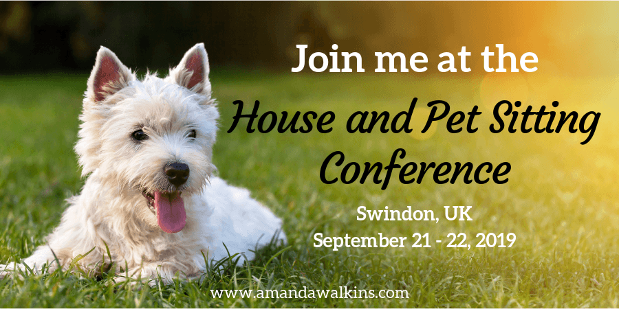 happy dog ready to go to the House & Pet Sitting Conference in the UK