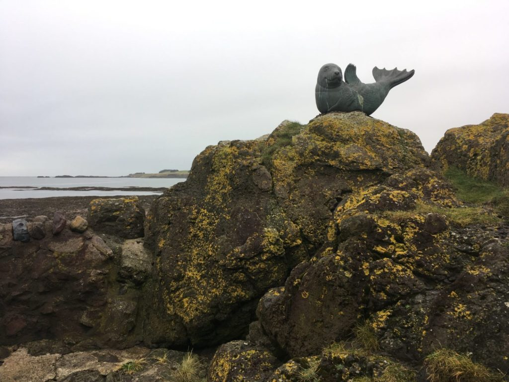 Day trip from Edinburgh to North Berwick to see the seal statue by the Scottish Seabird Centre
