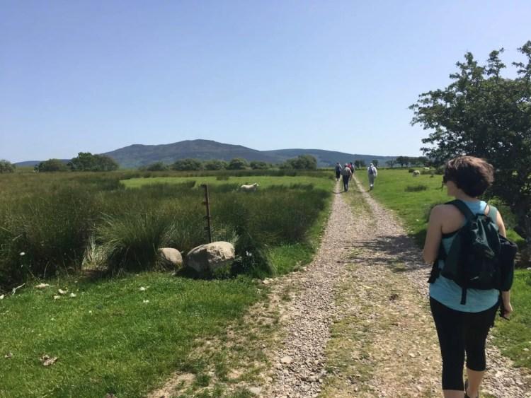 Amanda Walkins walking along a farm path toward Machrie standing stones in Arran