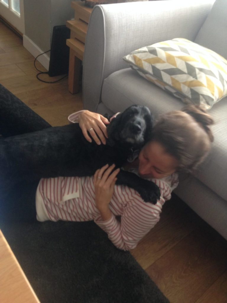 Amanda Walkins house sitter being hugged by a cocker spaniel