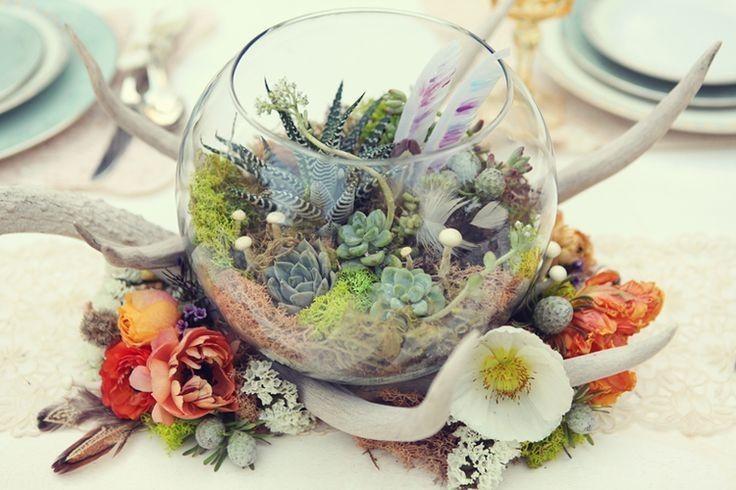Foto Addobbi floreali tipo di fiori Piante Grasse