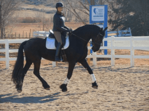 Jill and Libra from Amani Equine Assited Therapy